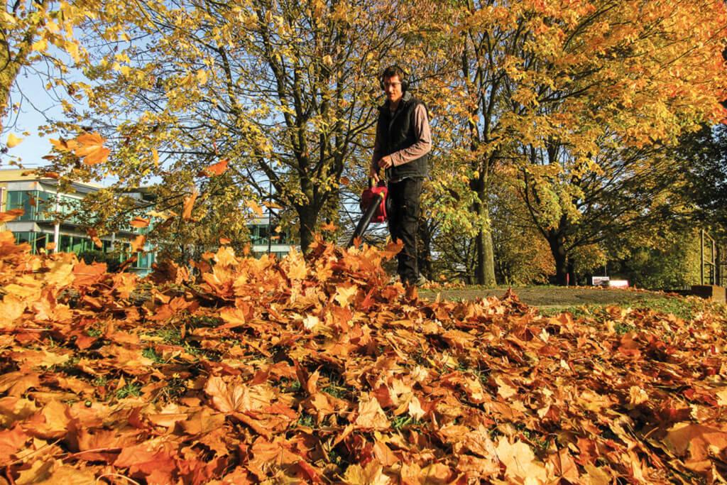 Puhač za listova